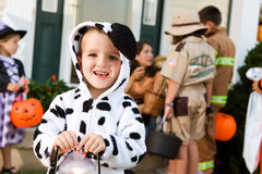 Halloween: Boy In Dog Costume Holds Light Royalty Free Stock Images