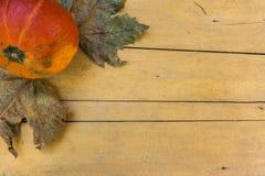 Halloween: bunter Kürbis auf Holztisch stockfotografie