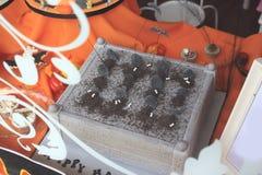 Halloween cake Royalty Free Stock Photo