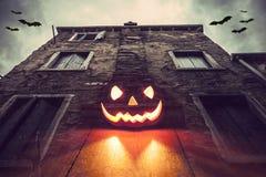 Halloween calabash Royalty Free Stock Photos