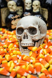 Halloween Candy Corn Stock Image