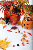 Halloween candy and pumpkins Royalty Free Stock Images