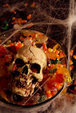Halloween Candy and Skull Stock Photography