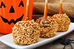 Halloween caramel apHalloween caramel apples with Jack o Lantern candy pail. Halloween caramel apples with nuts on a plate with Jack o Lantern candy pail in Royalty Free Stock Photo