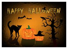 Halloween card angry black cat and two pumpkins on the dark orange background Royalty Free Stock Photography