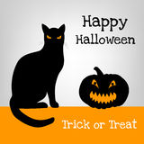 Halloween card with black cat Royalty Free Stock Photography