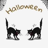 Halloween card with black cats Stock Photo