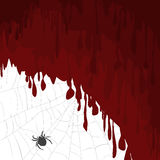 Halloween card with bloody background and spider on a spider web Royalty Free Stock Photography