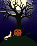 Halloween card. A Halloween illustration for cards, flyers and banners royalty free illustration