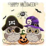 Halloween card with owls Stock Image