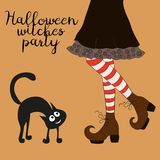 Halloween cartoon witch legs. Halloween cartoon witch legs in boots and with cat Royalty Free Stock Image