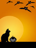 Halloween Carved Pumpkin Cat Moon and Bats Stock Photos