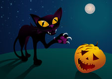 Halloween cat. Cat scratching Halloween pumpkin, moonlight scenery Royalty Free Stock Photos