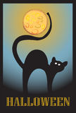 Halloween cat. And moon background stock illustration