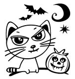 Halloween cat Stock Photography