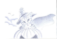 Halloween cat. A nice and furry kitten, dressed for the halloween day Stock Photo