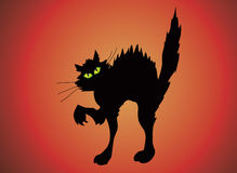 Halloween cat. Arching black cat with green eyes on red background Stock Photography