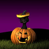Halloween Cat 5 Royalty Free Stock Images