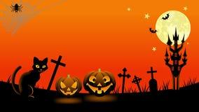 Halloween cat animation stock video footage