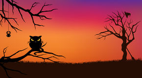 Halloween cat background Royalty Free Stock Photography