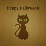 Halloween cat on cardboard Stock Images