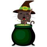 Halloween Cat Cauldron Fotos de archivo libres de regalías