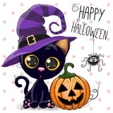 Halloween Cat. Halloween illustration of Cartoon cat with pumpkin on a dots background vector illustration