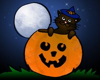Halloween Cat, Pumpkin, Moon Royalty Free Stock Image