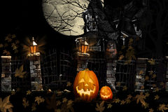 Free Halloween Cat Pumpkins Haunted House Stock Photos - 33481163