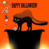 Halloween with cat, spider, candy and eyes Stock Photography
