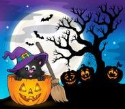 Halloween cat theme image 7 Stock Image