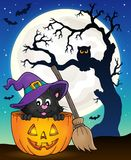 Halloween cat theme image 9 Stock Photography