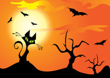 Halloween cat, trees and bats. Halloween cat, trees and bats on the moon and orange sky Stock Photo