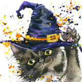 Halloween cat and witch hat. Watercolor illustration background Royalty Free Stock Photos