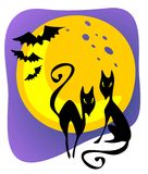 Halloween cats Royalty Free Stock Photos