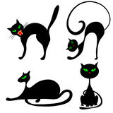 Halloween cats Stock Image