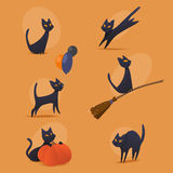 Halloween cats Royalty Free Stock Photo