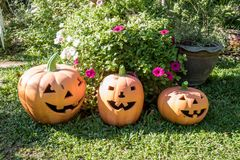 Baked clay pumpkin in the garden.One of the symbols of Halloween stock photos