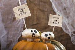 Halloween-Champignons auf die Kürbisoberseite Lizenzfreie Stockfotos