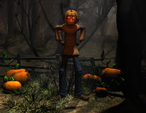 Halloween character pumpkin man Royalty Free Stock Image