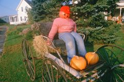 Halloween Character Sitting in Carriage, New England Stock Image