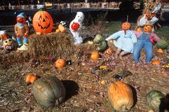 Halloween Characters in Pumpkin Patch, Maggie Valley, Tennessee Royalty Free Stock Image