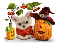 Halloween for Chihuahuas royalty free stock photography