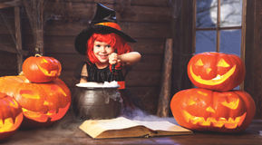 Halloween. child girl witch preparing  potion in cauldron with p Stock Image