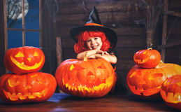 Halloween. child little witch with lantern pumpkin Jack Royalty Free Stock Image