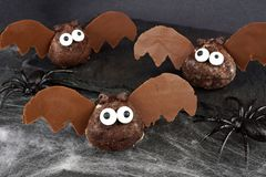Halloween chocolate donut hole bats on black background Royalty Free Stock Image