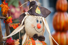 Halloween. Close up shot of halloween doll portrait Royalty Free Stock Photography