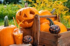 Halloween-cocktail dichtbij pompoenendecoratie op achtergrond Stempel voor een partij De hefboom-o-lantaarn drinkt Stock Foto's