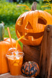 Halloween cocktail near pumpkins decoration on background. Punch for a party. Jack-o-Lantern is drinking  . Close up. Halloween cocktail near pumpkins Punch for Royalty Free Stock Images