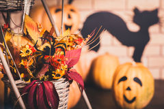 Halloween composition of autumn leaves and flowers Royalty Free Stock Photos